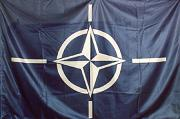 Will NATO Prove Itself in Afghanistan?