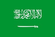 Does the World Need a Trusteeship for Saudi Arabia (and a new vision for Iraq and Iran?)